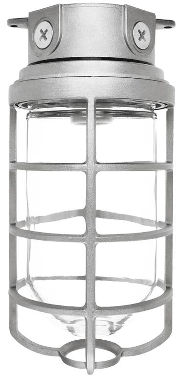 RAB VX200DG 300 W Natural Die-Cast Aluminum Incandescent Vaportight Ceiling Fixture with Guard